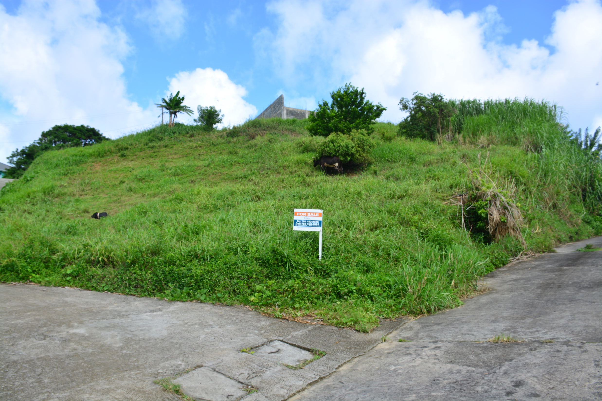 Land for Sale – North Union